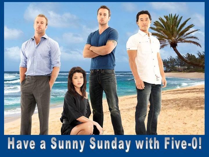 hawaii 5 0 essay The television show hawaii five-o was filmed and written very well april 08, 2018, from more literature.